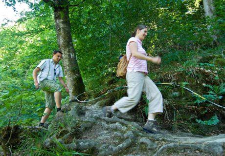 Wandern auf dem Hunsrückhöhenweg